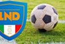 Promozione, cinque retrocessioni a girone !! Obbiettivo: tornare ai tre gironi